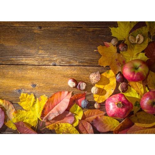 Herbstliche Äpfel - Tischset aus Papier 44 x 32 cm