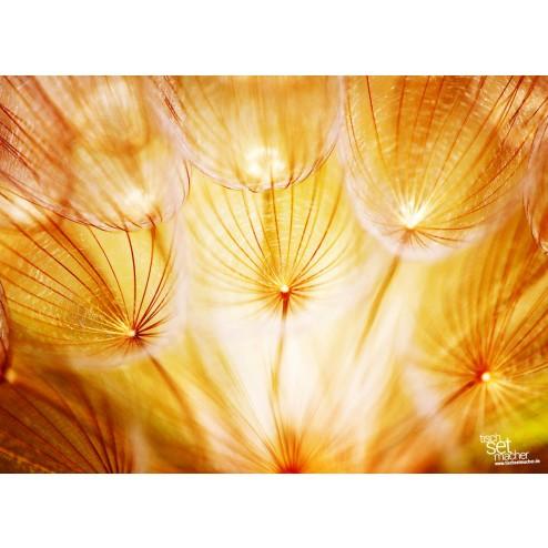 Pusteblume orange - Tischset aus Papier 44 x 32 cm