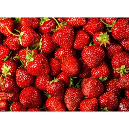 "Tischsets | Platzsets - Fruchtig ""Erdbeeren"" aus Papier - 44 x 32 cm"