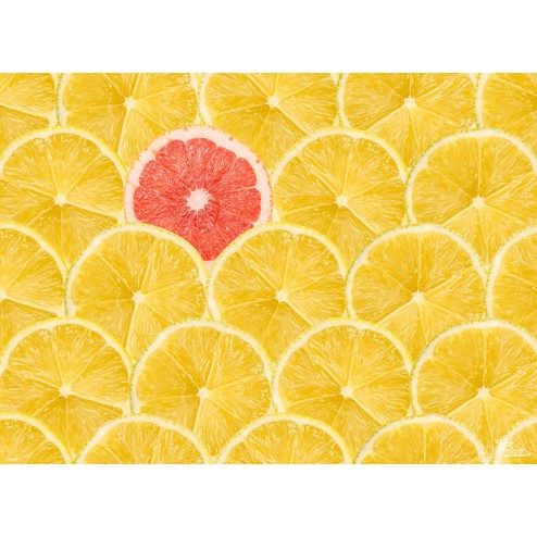 "Tischsets | Platzsets - Fruchtig ""Zitronen & Grapefruit"" aus Papier - 44 x 32 cm"