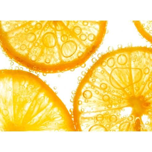 """Tischsets   Platzsets - Fruchtig """"Orangenscheiben im Wasser"""" aus Papier - 44 x 32 cm"""