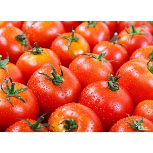 frische_tomaten