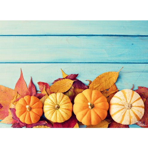 Tischsets   Platzsets - Kürbisse auf bunten Herbstblättern aus Papier - 44 x 32 cm