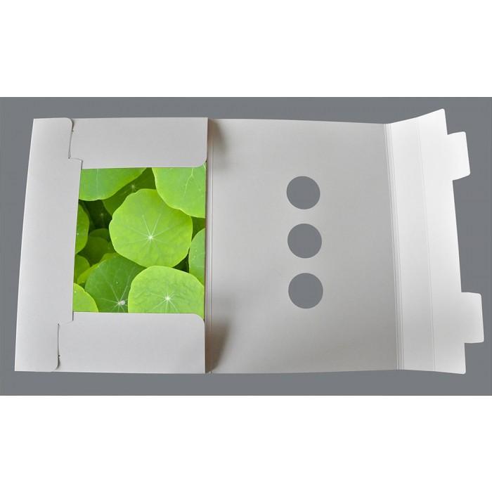 tischsets platzsets weihnachten schneekristall links. Black Bedroom Furniture Sets. Home Design Ideas