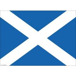 Flagge Schottland - Tischset aus Papier 44 x 32 cm