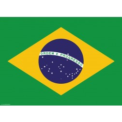 Flagge Brasilien - Tischset aus Papier 44 x 32 cm