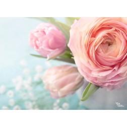 Rosa Rosen - Tischset aus Papier 44 x 32 cm