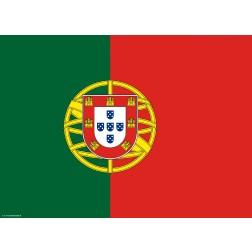 Flagge Portugal - Tischset aus Papier 44 x 32 cm
