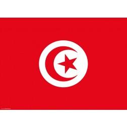 Flagge Tunesien - Tischset aus Papier 44 x 32 cm