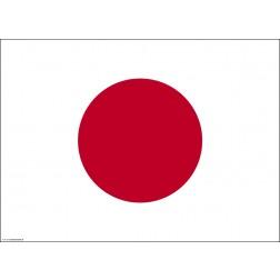 Flagge Japan - Tischset aus Papier 44 x 32 cm
