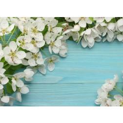 Kirschblüten auf Holz - Tischset aus Papier 44 x 32 cm