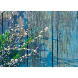 Weidenkätzchen auf blauem Holz - Tischset aus Papier 44 x 32 cm