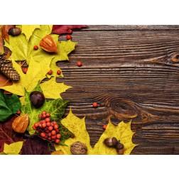 Rustikales Herbst Dekor - Tischset aus Papier 44 x 32 cm