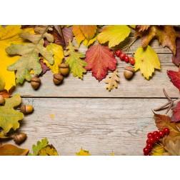 Bunter Herbst (1) - Tischset aus Papier 44 x 32 cm