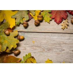 Bunter Herbst (2) - Tischset aus Papier 44 x 32 cm
