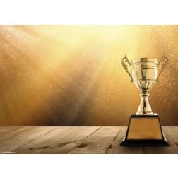 Pokal Gold - Tischset aus Papier 44 x 32 cm