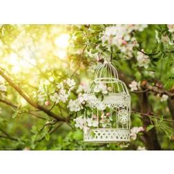 Vogelkäfig im Freien - Tischset aus Papier 44 x 32 cm