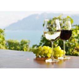 Wein am See - Tischset aus Papier 44 x 32 cm