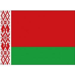 Flagge Weißrussland - Tischset aus Papier 44 x 32 cm