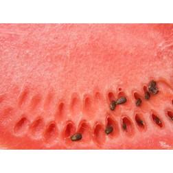 Tischset | Platzset - Wassermelone - aus Papier - 44 x 32 cm