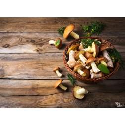 Tischsets | Platzsets - Pilze aus Papier - 44 x 32 cm