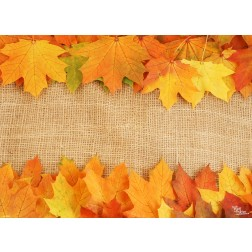 Tischsets | Platzsets - Farbenfrohe Herbstblätter aus Papier - 44 x 32 cm