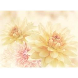Blütenzauber - Tischset aus Papier 44 x 32 cm