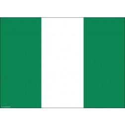 Flagge Nigeria - Tischset aus Papier 44 x 32 cm