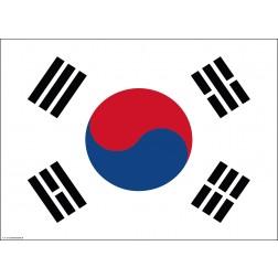 Flagge Südkorea - Tischset aus Papier 44 x 32 cm