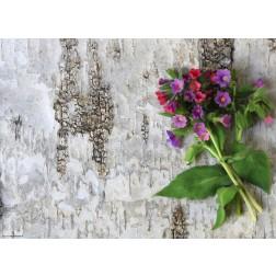 Lila Gartenblumen  - Tischset aus Papier 44 x 32 cm