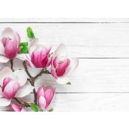 Magnolien auf Holz - Tischset aus Papier 44 x 32 cm
