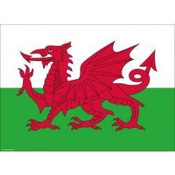 Flagge Wales - Tischset aus Papier 44 x 32 cm