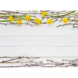 Frühlingszweige - Tischset aus Papier 44 x 32 cm