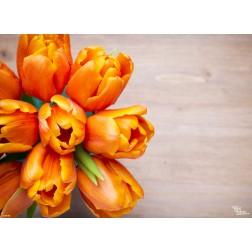 Orangene Tulpen - Tischset aus Papier 44 x 32 cm