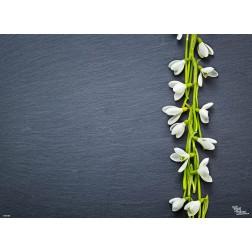 Schneeglöckchenbund - Tischset aus Papier - 44 x 32 cm