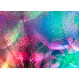 Pusteblume bunt - Tischset aus Papier 44 x 32 cm